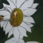 Cudros_flores_grandes_f2